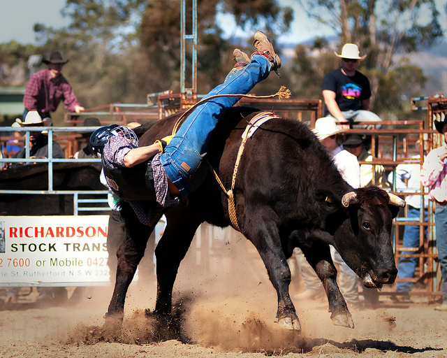 Gresford Rodeo #4